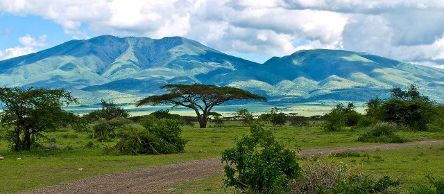 Safari en Afrique : le parc du Serengeti
