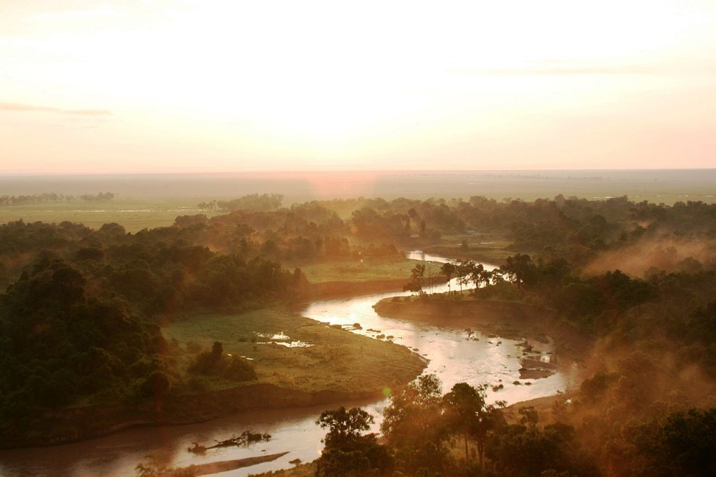 1280px-Serengeti_-_Stefan_Swanepoel_