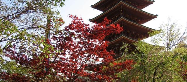 Séjour au Japon : Cap vers le pays du soleil levant !