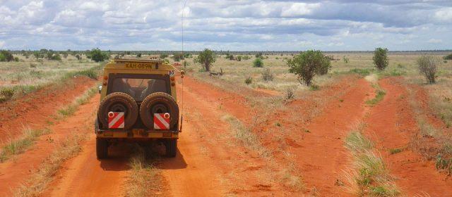Voyage en Afrique du Sud : idées de sites à découvrir