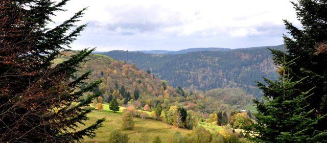 Le massif des Vosges : une destination à découvrir pour cet été